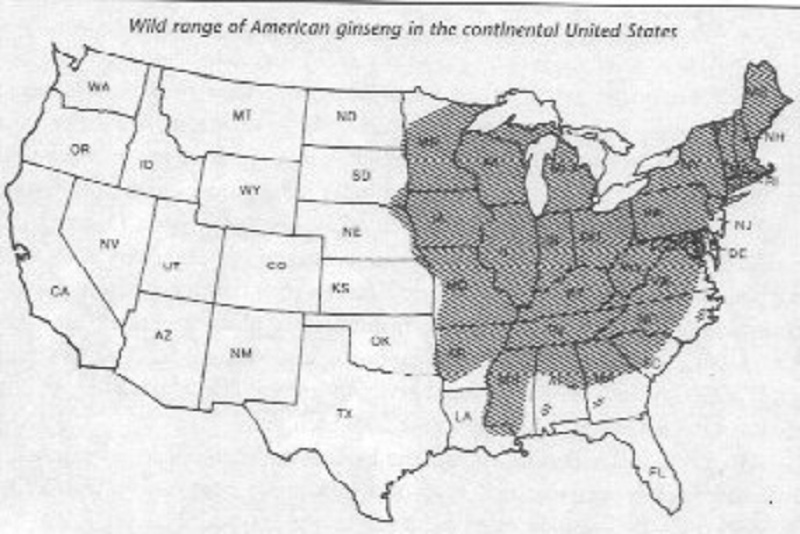 Ginseng In Illinois Map.New To Ginseng And In Texas To Boot Ginseng Forum